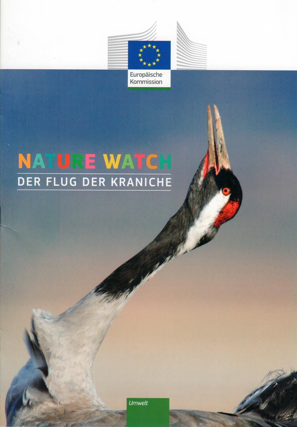 Nature Watch - Flug der Kraniche